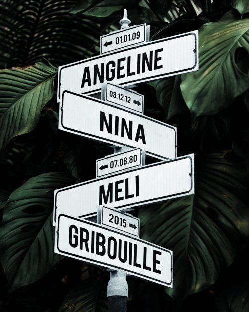 tableau prénoms personnalisé avec fond jungle